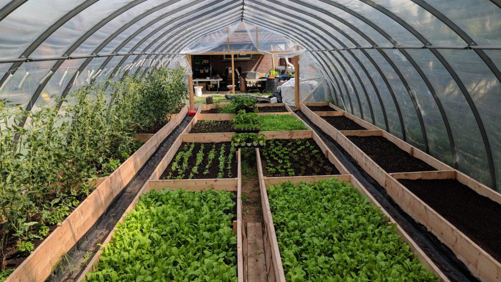 greenhouse first season